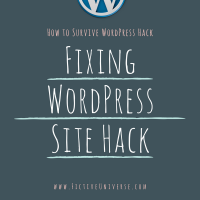 How to Survive WordPress Hack